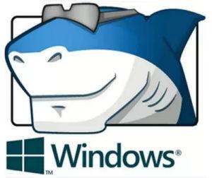 ADVANCED Codecs for Windows